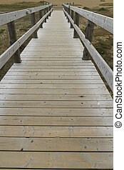 Wooden footbridge or boardwalk, Chesil beach - Converging...