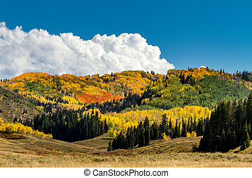 Fall in Steamboat Springs Colorado - Brightly colored...