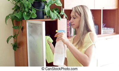 woman dusting glass of furniture - woman dusting glass of...