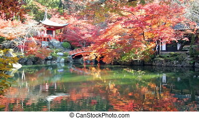 Autumn season,The leave change color of red in Tample japan...