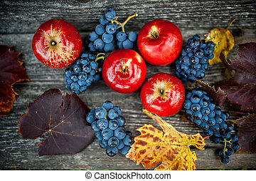 autumn harvest at vineyard and farm with ripe grapes and red apples, fresh and organic fruits ready
