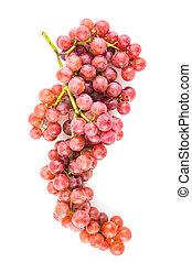 uvas, isolado, branca, fundo