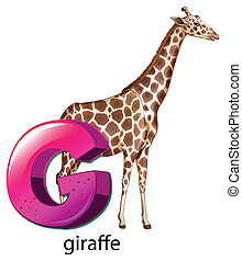 A letter G for giraffe - Illustration of a letter G for...