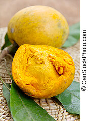 Canistel fruit - Tiesa, egg fruit, Canistel. (Pouteria...
