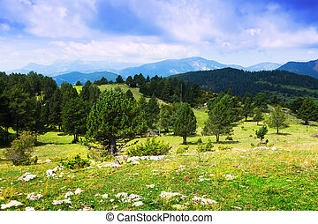 mountains landscape in Pyrenees