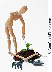 Cultivation concept - Cultivation of a plant, a new idea...