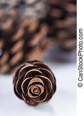 Pine cones isolated with white background