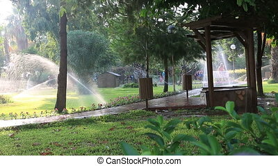 Grass Sprinkler watering - Sprinkler showering lawn