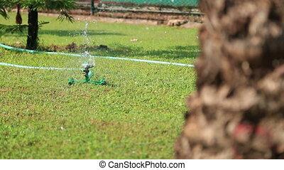 Grass Sprinkler watering - Sprinkler showering lawn