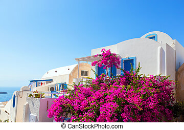 Traditional Greek house with blue windows and flowers...
