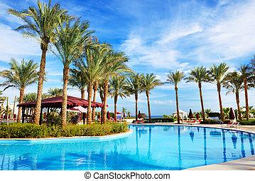 el, natación, piscina, lujo, hotel, Sharm, jeque,...