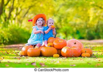 Children at pumpkin patch - Happy children at pumpking patch...