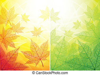 Autumn and summer backgrounds - Two backgrounds with maple...