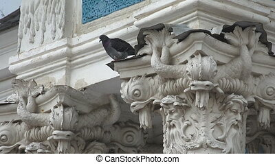 Dove on the capitals of the columns.