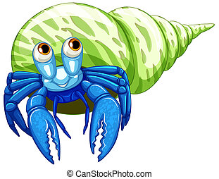 Hermit crab - Illustration of a close up hermit crab