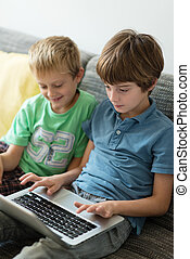 Two young brothers using a laptop computer