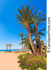 Aguilas Poniente beach Murcia in Spain - Aguilas beach...