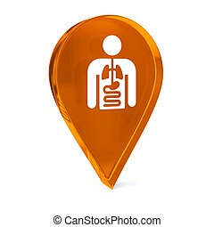 Internal Medicine - Glass GPS marker icon with white health...