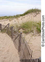 Dunes in Provincetown,Massachusetts - Dunes at Race Point in...