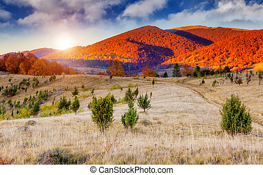 colored autumn mountains - Majestic colorful landscape with...