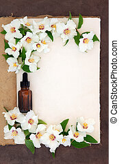 Naturopathic Medicine - Mock orange flower border with...