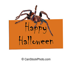 Spider Over Happy Halloween Sign - A creepy tarantula spider...