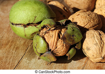 Walnut husk - Walnut green husk reveals the wrinkly shell
