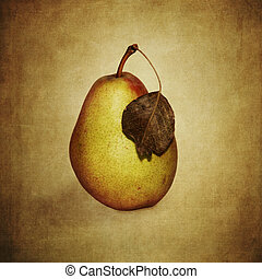 Pear with wilted leaves - Autumnal pear with wilted leaves...