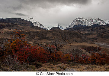 Autumn in El Chalten, Fitz Roy, Argentina