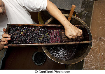 Process of wine making homemade winery with oak barrel and...