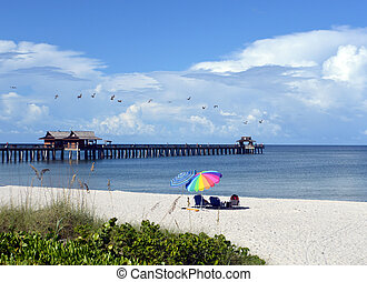 Beach bird watching - This is a photo of beach goers...