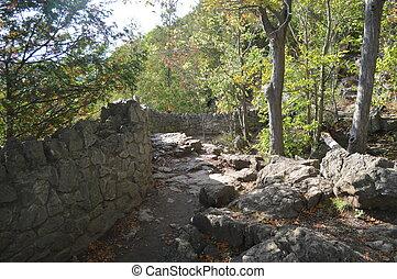 Niagara Escarpment Path - An old stone wall provides a...