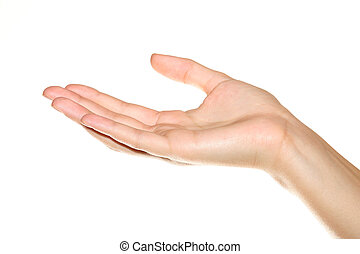 Human hand on white background - A human hand on white...