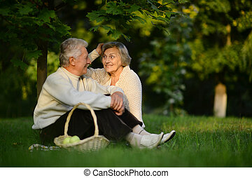 Loving elderly couple having a picnic in the summer