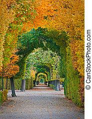 autumn park - long road in autumn park