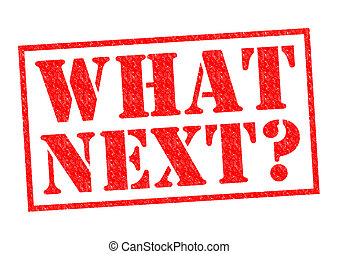 WHAT NEXT? red Rubber Stamp over a white background.
