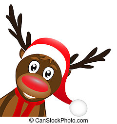 reindeer on a white background