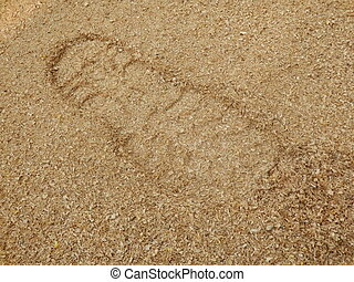 Sawdust - Close up of a boot print in sawdust created by...