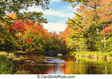 Mersey river in fall Kejimkujik National Park, Nova Scotia,...
