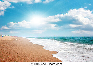 sandy beaches  - beautiful sandy beach on the coast sea