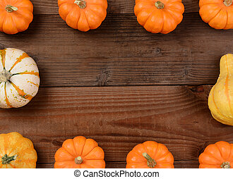 Pumpkin Gourd Frame - Mini pumpkins and gourds forming a...