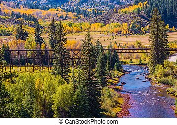 Colorado Fall Foliage. Yellow Aspen Trees, River and Old...