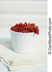 red currents - fresh red currents in the white bowl