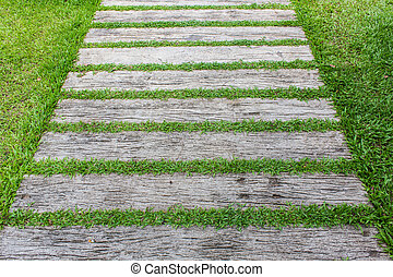 Block walk path in the garden with green grass.