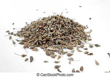 Aniz - Anise - Pimpinella anisum spices