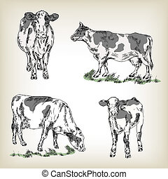 Milk cow set. Hand drawn vector illustration in sketch style