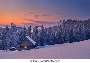 house - wooden house in winter forest
