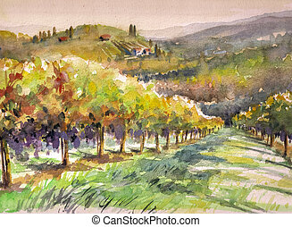 Vineyard - Landscape with vineyard.Picture created with...
