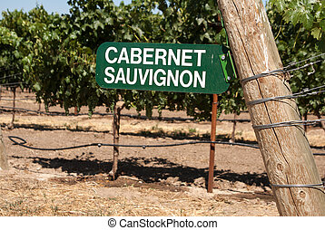 Vineyard sign for Cabernet Sauvignon grapes on the vine -...