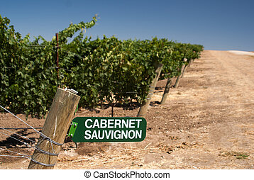 Cabernet Sauvignon Sign in California Vineyard - Cabernet...